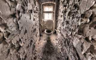 Отделка туалета плиткой: монтаж
