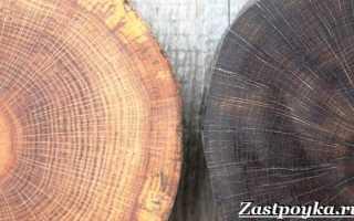 Морилка для дерева – это что такое: определение и виды термина