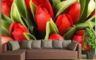 Фотообои с тюльпанами в интерьере